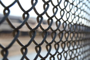 A close-up picture of a wire fence.