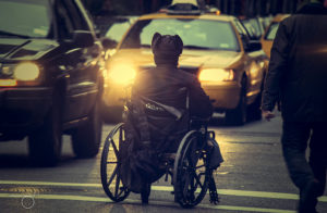 A wheelchair user is in a crosswalk facing some yellow taxis.